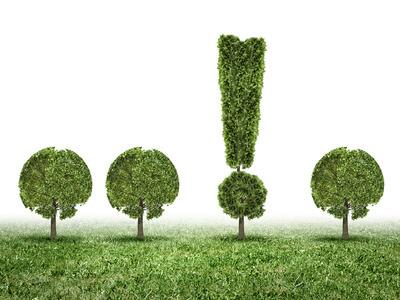 4 Bäume auf einer Wiese. Einer in Form eines Ausrufezeichens